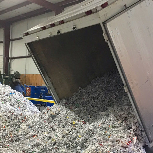 DOCUMENT SHREDDING - PLANT BASED SHREDDING - quick and affordable